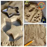 Mini giocattoli della spiaggia della sabbia di estate della muffa di plastica del castello
