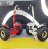 Scooter léger rentable d'équilibre électrique de deux roues