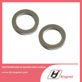 Starke Ring-Leistungs-Neodym-Magneten der seltenen Massen-N42 permanente