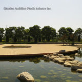 Plancher composé en plastique de bois de chine pour la décoration