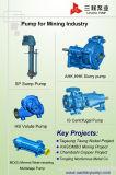 Pesado Processing Dever Slurry Bomba para Minerals
