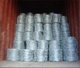 Bobina doble galvanizada del alambre de púas del alambre de púas Bwg14X14/Double de la torcedura
