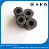 常置焼結させた亜鉄酸塩のMultipole磁石のリング