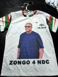 Les hommes de T-shirt d'impression de modèle du T-shirt d'élection de Wwwxxxcom de plaine bon marché faite sur commande de T-shirt de campagne des hommes blancs de polo vendent la Chine en gros