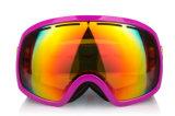 L'anti graffiatura delle donne mette in mostra gli occhiali di protezione di Eyewear per lo snowboard