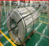 La couleur enduite a galvanisé la bobine de l'acier PPGI