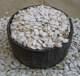 Las semillas de calabaza blanca de la nieve