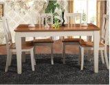 セットされる家具の表および椅子を食事する現代新しいデザイン