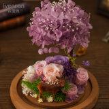 Ivenran 창조적인 꽃 선물