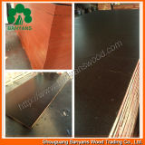 (싼 Price, Good Quality) Film Faced Plywood 또는 Shuttering Formwork Plywood/Marine Plywood