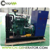 Tipo trifásico geradores da saída da C.A. do biogás de 50Hz/60Hz 30kw do desperdício animal