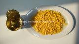 Maçã de milho doce em conserva com alta qualidade
