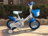 2012 أطفال درّاجة ([سر-د103])