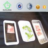 Nahrungsmittelindustrieller Gebrauch-Wegwerfplastikfleischverpackung-Kästen mit saugfähigen Auflagen