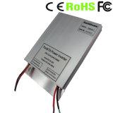 30W 12VDC zum Solarmikroinverter 24VAC