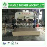 panneau en bois de particules de mélamine des graines de Garde de meubles de 1220X2440*12mm