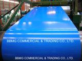 O aço revestido PPGL/PPGI/Color Coil/Dx51d de /Pre-Painted galvanizou a bobina de aço Prepainted PPGI da cor