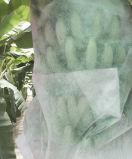 Pp.-nichtgewebtes Gewebe für Bananen-Deckel-Beutel