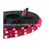 Luz mágica da fita do diodo emissor de luz da cor de Digitas RGB IP65 DC12V