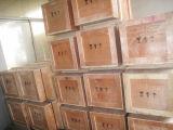 Running seco Rotary Vane Compressors para Printing e Packaging Machine (ZYBW80F)