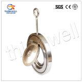 Tipo valvola di ritenuta della cialda dell'acciaio inossidabile con concentrarsi il perno ad occhio