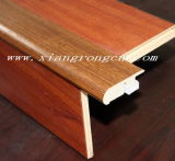 Stairnose/Treppen-Wekzeugspritze für lamellenförmig angeordneten Fußboden/Hartholz-Fußboden