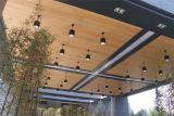 Samengesteld Plafond (MTC06)