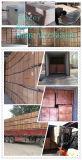 Madeira compensada da construção do uso da laje de cimento/madeira compensada do molde