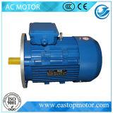 Senhora Motor 3HP para centrais energéticas com rotor da Alumínio-Barra