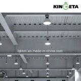 [كينجتا] [لد] عادية نباح ضوء
