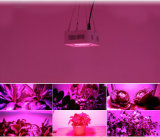 200W LEDは軽く完全なスペクトルを育てる