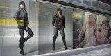Mitte-Geätzter VinylBuntglas-Film, Static haften Fenster-Abziehbild an