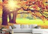 Diseño Calidad de Vida Hermosa murales pintados naturales increíble pared
