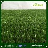 Kunstmatig Gras voor het Modelleren van de VoorTuin van de Werf