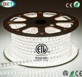 Indicatore luminoso di striscia di scommessa SMD5050 LED dai fornitori chiari del LED