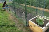 Maille de poulet de Sailin pour la clôture