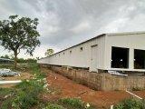 Bouw van het Landbouwbedrijf van de Kip van het Staal van lage Kosten de Geprefabriceerde Structurele