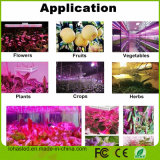 가득 차있는 스펙트럼 Hydroponic 식물 성장 빛