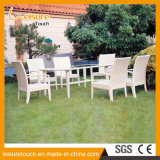 의자와 테이블 세트를 식사하는 실내 옥외 정원 대중음식점 가구 등나무