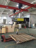 Type grue électrique de Brima 32/5t l'Europe d'élévateur de câble métallique de poutre de double de crochet de double