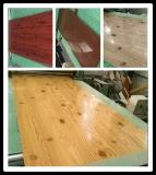 Подгоняйте гальванизированную катушку цвета стальную для плакирования толя и стены