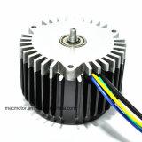 Motore della pompa del mackintosh 24V 600W 3000rpm (M12500-3)