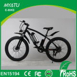 後部動力を与えられたDCモーターを搭載する36V 500Wの脂肪質の雪の電気自転車