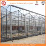 庭か野菜または花成長するのためのトンネルのポリカーボネートシートの温室を耕作すること