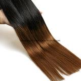 Color de tono sin procesar de Omber dos del pelo humano de la Virgen del brasilen@o del 100%