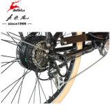 Bicicleta eléctrica de la ciudad del motor de la batería de litio de Unfoldable 36V 250W (JSL037S-3)