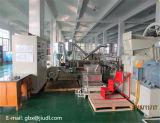 Granulatoire à deux étages de production élevée de Chine