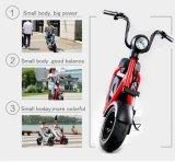 elektrisches Fahrrad 1000W mit 60V/20ah
