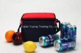 ピクニックトートバックのオルガナイザーのクーラー袋(YYCB037)