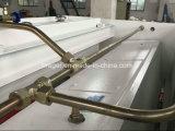 Hydraulischer Ausschnitt und scherende Platten-Maschine